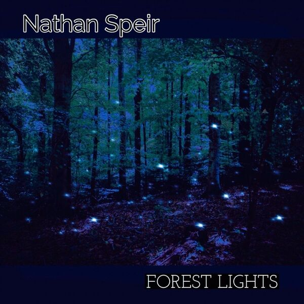 Cover art for Forest Lights